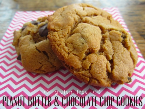 Gluten Free PB Chocolate Cookies