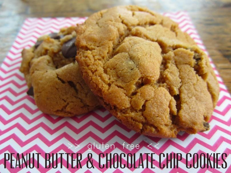 Gluten Free PB Chocolate Cookies