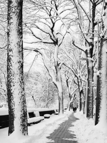 snow-nyc