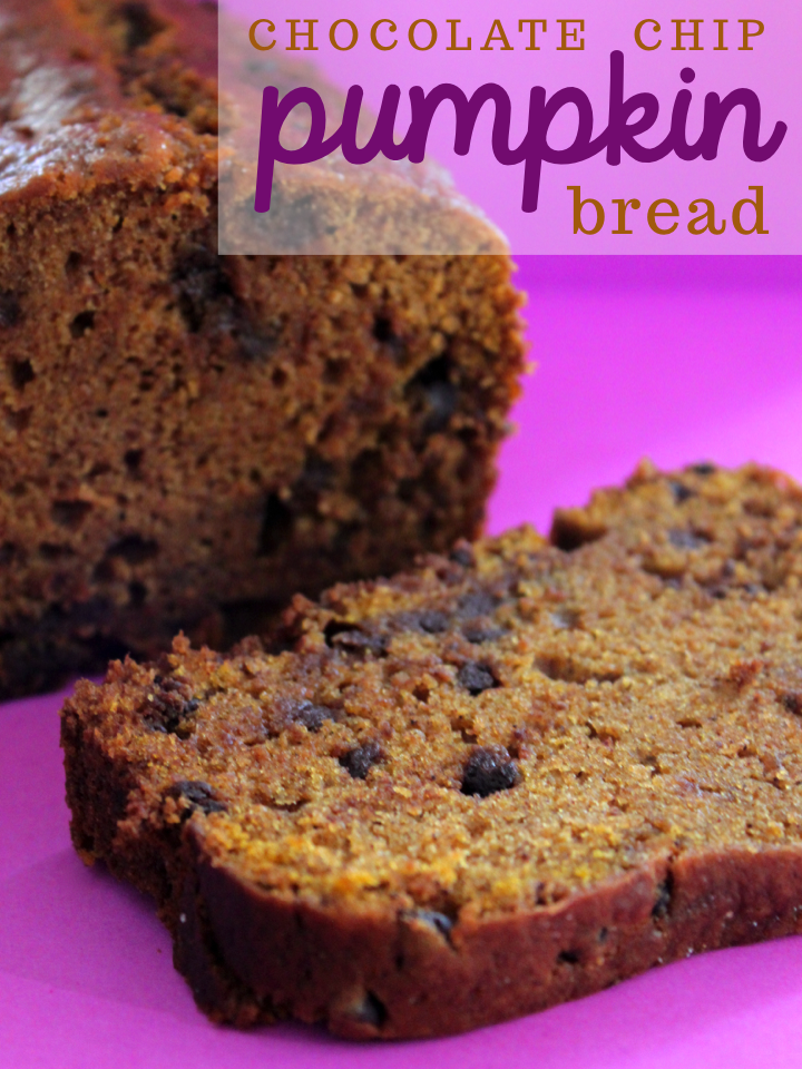 Chocolate Chip Pumpkin Bread Adapted from Sally's Baking Addiction ...