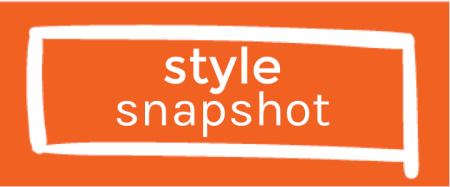 Style Snapshot
