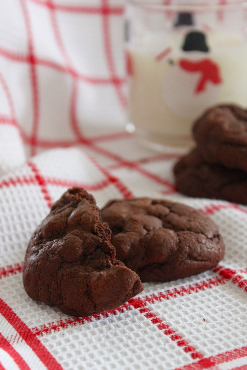 Fudgy Chocolate Chip Cookies 2
