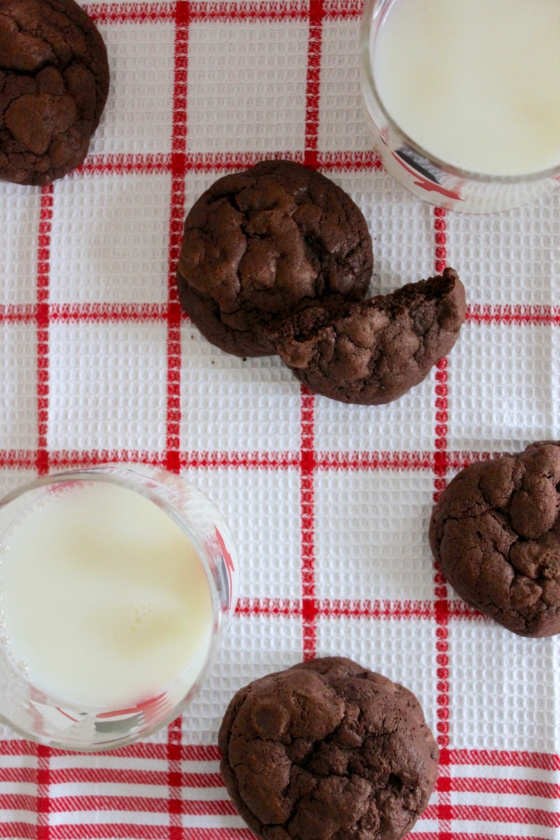 Fudgy Chocolate Chip Cookies