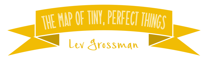 The Map of Tiny, Perfect Things