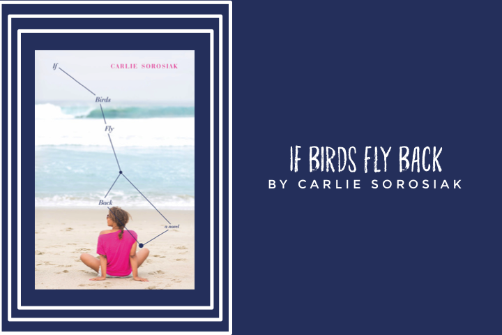 if-birds-fly-back